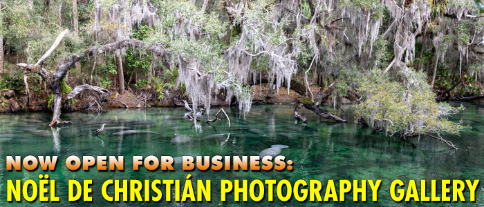 Noel de Christian Photography Gallery